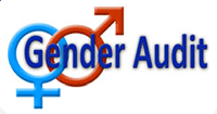 Seminars in the field of gender problematic, the implementation of the gender audit.